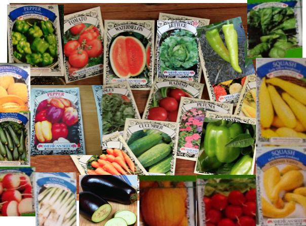 all-veggies